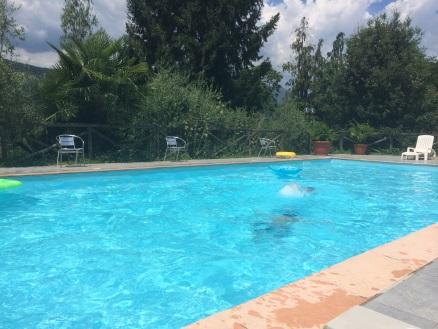 Indbydende pool på landsted